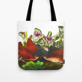 Key-west Dove Tote Bag