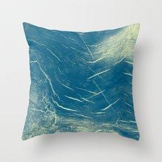 1076 Throw Pillow