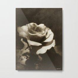 Rosas Moradas 2 Antiqued Metal Print