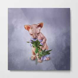 Drawing Sphynx kitten Metal Print