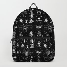 Collecting negative bugs Backpack