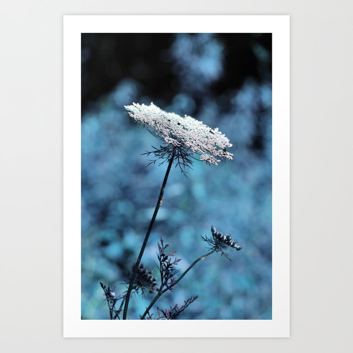 Dreaming of Company Art Print