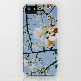 Cherry Blossom IV iPhone Case