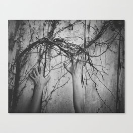 reaching, growing Canvas Print
