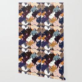 variety of cats Wallpaper
