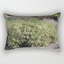 White Desert Wildflowers Desert Oasis Coachella Valley Wildlife Preserve Rectangular Pillow