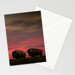 Two American Buffalo Bison at Sunset Stationery Cards