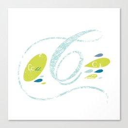 C-curl Canvas Print