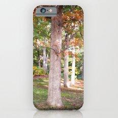 Trees at Wellesley  iPhone 6s Slim Case