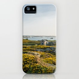 Brittany iPhone Case
