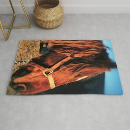 Mustang getting ready for Auction - Richmond Virginia Rug
