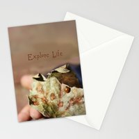 Explore Life Stationery Cards