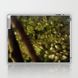 Moonlight on Leaves Laptop & iPad Skin