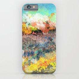 A Less Ordinary Landscape iPhone Case
