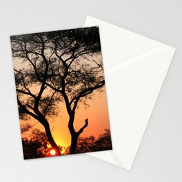 Sunset in Africa Stationery Cards