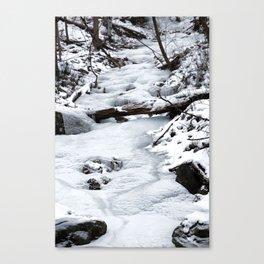 Frozen Escape Canvas Print