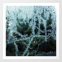 Seasonal window dressing Art Print