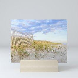 Seagull Beach, Yarmouth Cape Cod Mini Art Print
