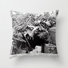 The Hole Throw Pillow