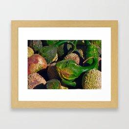 Autumn Squash Framed Art Print