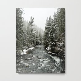 Salmon River Metal Print