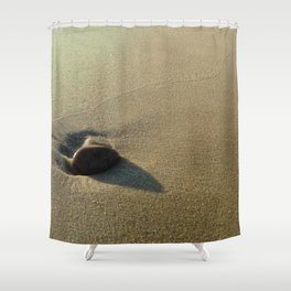 Oceanic pebble 4 Shower Curtain