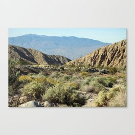 Desert Scene 6 Coachella Valley Wildlife Preserve Canvas Print