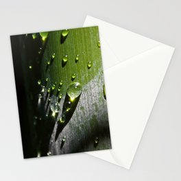 # 290 Stationery Cards