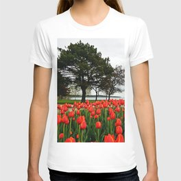 Tulips and the Trees by the Lake T-shirt