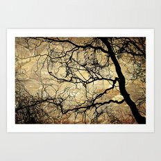 Branches Pattern and Texture Art Print