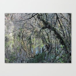 Slough Preserve Abstract Canvas Print