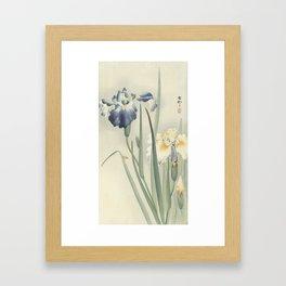 Irises - Ohara Koson (1900 - 1936) Framed Art Print