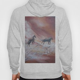 The Sylph Riders Hoody