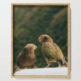Kea Parrots in New Zealand Serving Tray