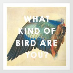 Wing of a Blue Roller (1512), Albrecht Durer // Moonrise Kingdom (2012), Wes Anderson Art Print