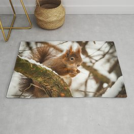 The Squirrel Rug
