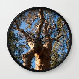 Scribbly Gum Tree, Muogamarra Reserve, Sydney Wall Clock