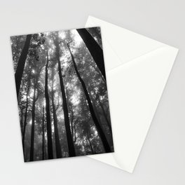 Smoky Mountain National Park Foggy Trees Stationery Cards