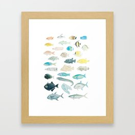 The Inhabitants of the Waters of Clipperton Atoll 1 Framed Art Print