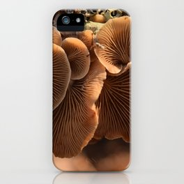 Among the Mushrooms 1 iPhone Case