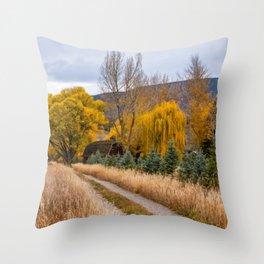 Colorado Little Red Barn Throw Pillow