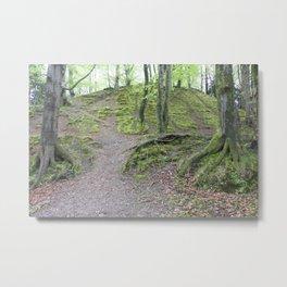 Forest Dunkeld Scotland Metal Print