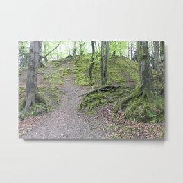 Forest Dunkeld Scotland Metal Print