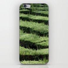 Labirinth iPhone & iPod Skin