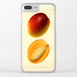 Vintage Botanical Mango Clear iPhone Case