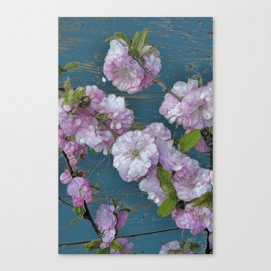 Vintage Pink Blossoms Canvas Print