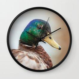 Mallard Portrait Wall Clock
