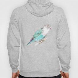 Pale blue lovebird Hoody