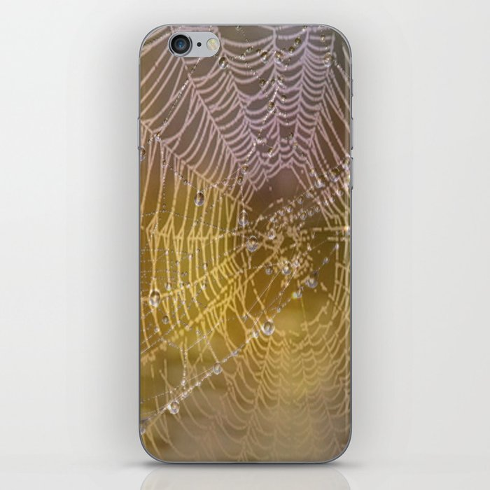 Double Spider Web iPhone Skin
