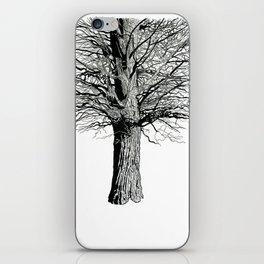 Broadview iPhone Skin